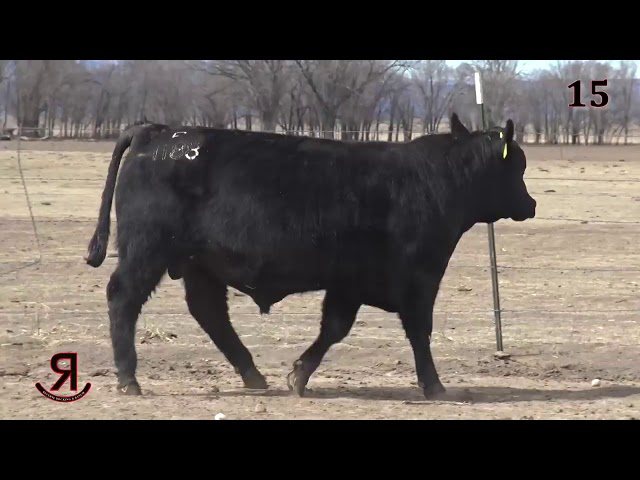 Reverse Rocking R Ranch Lot 15