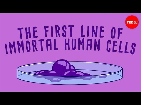 The immortal cells of Henrietta Lacks - Robin Bulleri