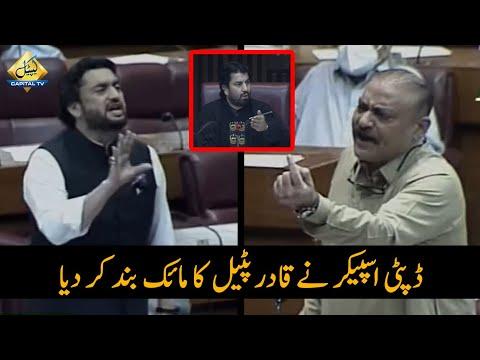 Deputy Speaker ny Qadir Patel Ka Mic Band Kar Dya | Abdul Qadir Patel VS Shehryar Afridi in NA