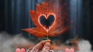 Whatsapp Durum Videoları-Aşk Sensin