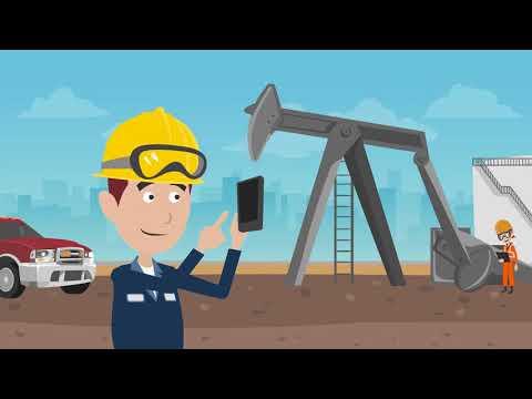 /SKYBFR/YCA1  ::  Plant Maintenance Inspection
