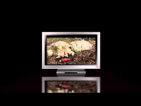 TV-10 Promo