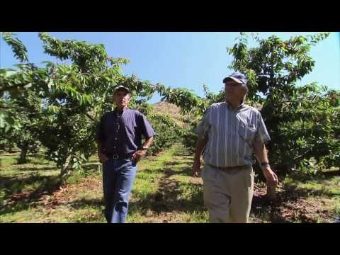 Produce And Agriculture Threats: America's Heartland - Episode 901