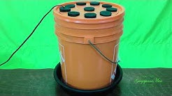 How to make the best Hydroponic Super Cloner