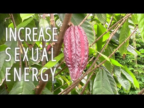 INCREASE SEXUAL ENERGY WITH ADAPTOGENIC HERBS