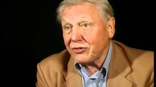 BBC.  The Ascent of Man. Extra Interview with Sir David Attenborough.
