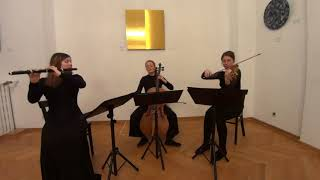 Trio in D Major, Op. 31 for flute, violin & cello by Anton Hoffmeister