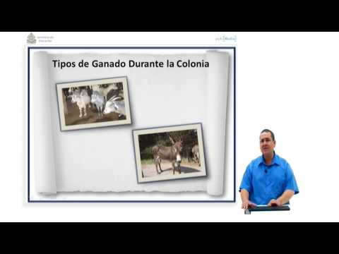 Ibertel. Curso de Historia de Honduras 22. 9º Grado. Ganadería
