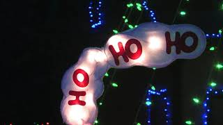 Amazing Christmas Lights Decorations - For the Dogs & Cats