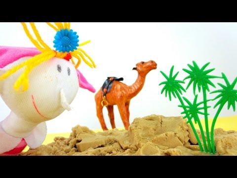Верблюжья колючка - это... Что такое Верблюжья колючка?