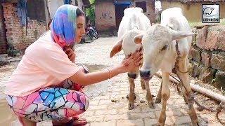 Akshara Singh का यह वीडियो देख आपका दिल खुश हो जाएगा Lehren Bhojpuri