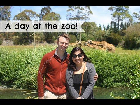 Orana wildlife park adventure-christchurch