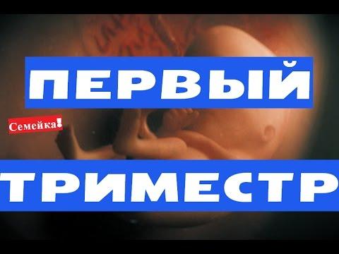 Силовые виды спорта: пауэрлифтинг, русский жим