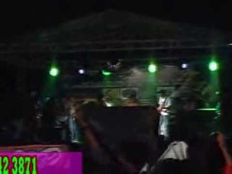 ZOMBIE GIMBAL - pesta pantai (tony q cover) live bunga mekar kunciran tangerang