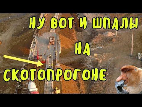 Крымский мост(06.11.2019)На скотопрогоне