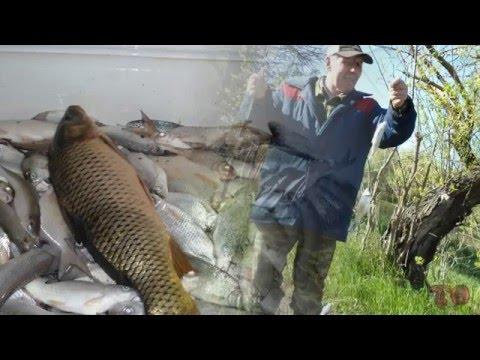 рыбалка на карася в астрахани видео
