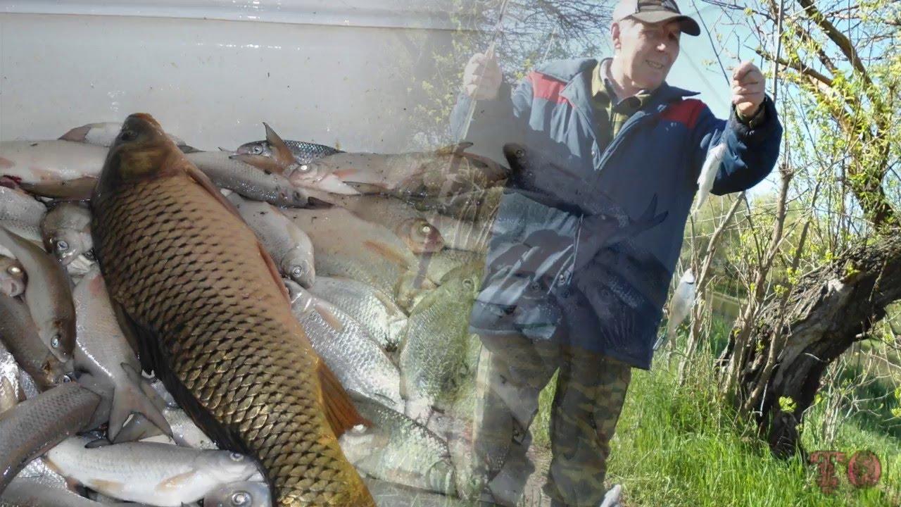 список для рыбалка в астрахани весной на воблу