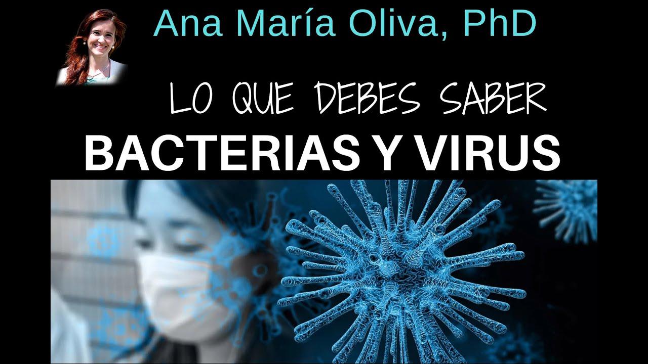 LO QUE DEBES SABER SOBRE BACTERIAS Y VIRUS (y que probablemente nunca te contaron) ???? ????