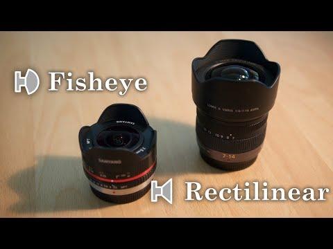 Fisheye Vs. Rectilinear Lens