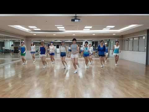 In The Navy Line Dance (Low Beginner Level)