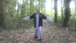 soie zen et asie energetique prsente qi gong et tai chi chuan