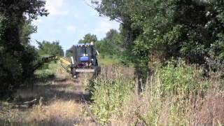 Napoleon, Defiance & Western Railway cleanup