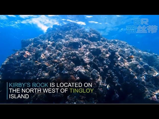 Kirby's Rock - Anilao Dive Resort Site by Blue Ribbon Dive Resort