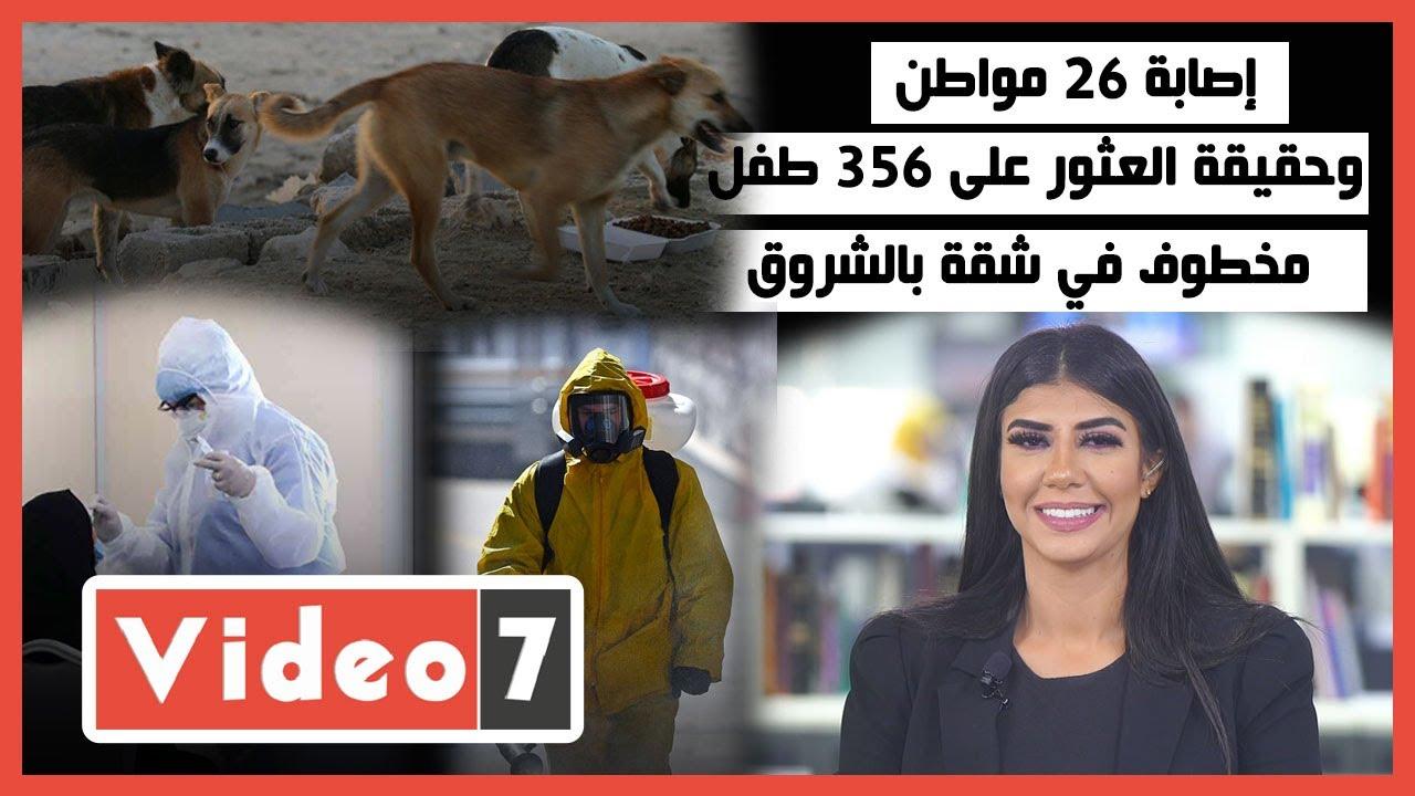 صورة فيديو : إصابة 26 مواطن بسبب كلب مسعور في الأقصر..وحقيقة العثور على 356 طفل مخطوف في شقة بالشروق…