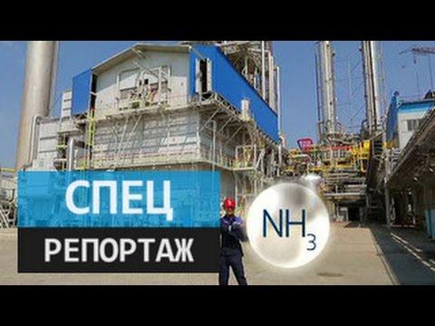 Новый элемент. Специальный репортаж Алексея Егорова