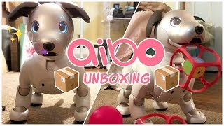 aibo 1000 unboxing, set-up, and first impressions!