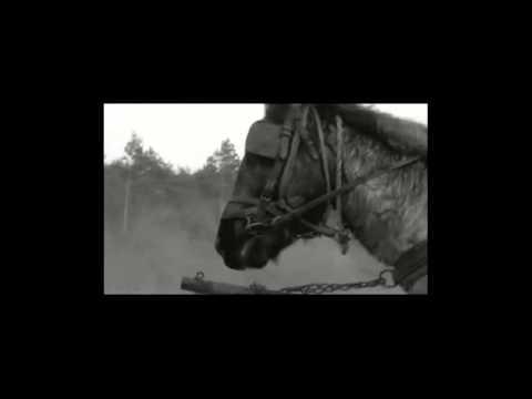 Balanescu Quartet - Mountain Call