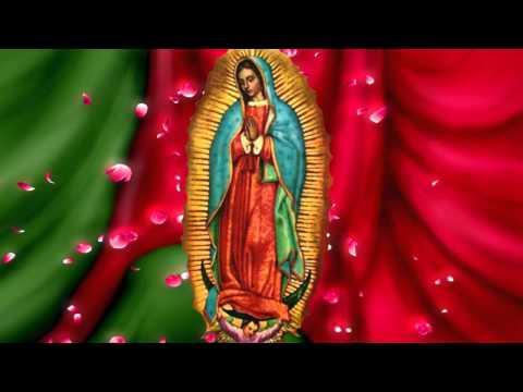 Video Imagen de la Virgen de Guadalupe
