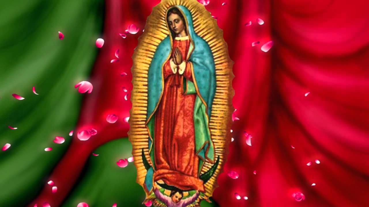 Videos de la Rosa de guadalupe for Android - APK Download