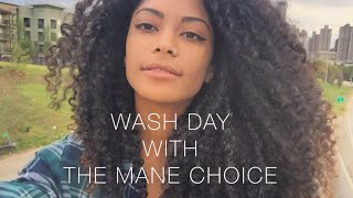 Wash Day | The Mane Choice