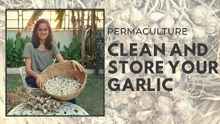 Permaculture | SUPER EASY WAY TO CLEAN GARLIC!