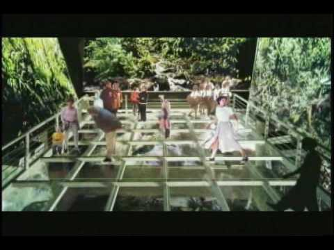 Biomuseo - Documental SerTV