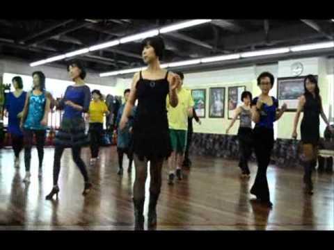 The Conga Line Dance | Chihuahua love, Chihuahua ... |Dog Line Dance