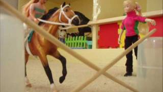 Breyer Riding Lesson and Arabian Show Halter