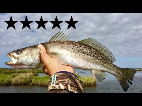 What a 5-star chef does with speckled trout