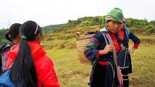 Movie Qub.  Review, Trip to Sapa( Black Hmong)  A place where keep you walking.