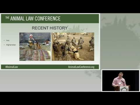 Animal Law Conference 2016 - 04 - Military Working Dogs- War Heroes Treated as Property 10-08-16