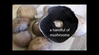 Quick Easy Mushroom Sauce