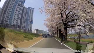 벚꽃길 드라이브 : 샤오이 블랙박스 주간 주행영상 테스…