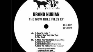 Brand Nubian - Where is Pubba