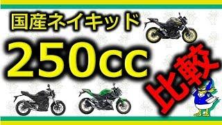 【バイク】国産250ccネイキッドを比べるぞ!!【比較動画】