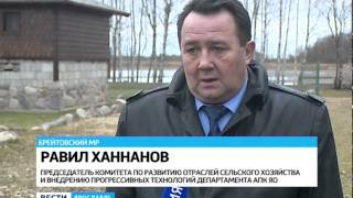 видео В Рязанской области вырастет производство птицы