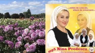 COLAJ ALBUM NINA PREDESCU - MP3 ANIVERSAR - EU LA NIMENI NU-S DATOR