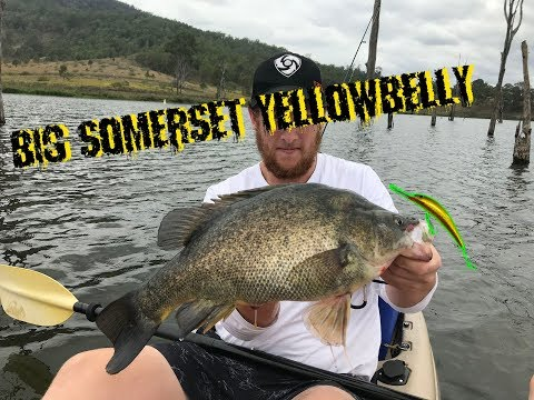 BIG Somerset Yellowbelly EP. 006