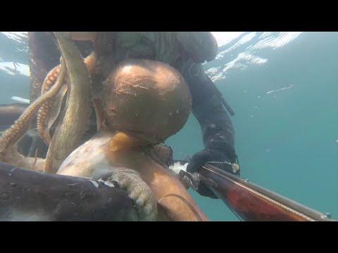 POLPONI TRA LE ANFORE:pescasub
