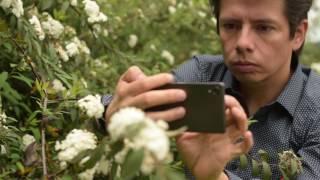 3 Smartphones 3 Fotógrafos Cesar David Martínez - Sony Xperia X